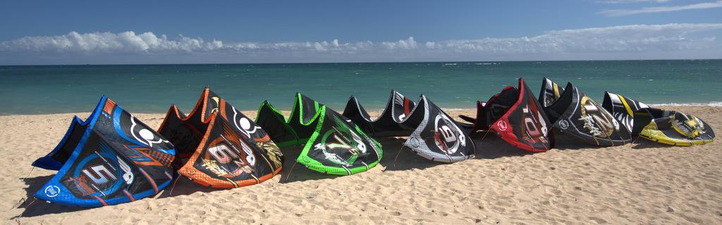wainman hawaii 3.0 rabbit gang all kites